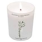 Carriere Freres Lavendula Angustifolia ( Lavender) Candle (6.5 oz)