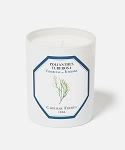 Carriere Freres Tuberose Polianthes Tuberosa Candle