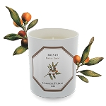 CARRIERE FRERES - EBONY (EBENUS) CANDLE 6.5 oz.